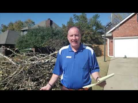 Oklahoma City and Edmond Ice Storm cleanup and branch pick up, fall 2020.